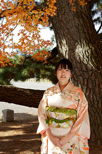Beautiful Young Japanese Woman in Kimono under Autumn Foliage