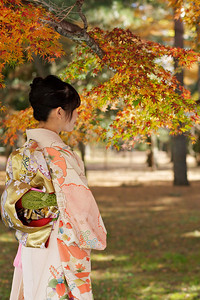 Young Japanese Woman in Kimono from back with Autumn Foliage