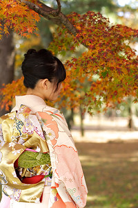 Kimono Girl showing her Obi in Autumn  Young Japanese Woman in Kimono, back view, with Autumn Foliage