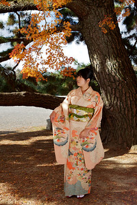Beautiful Young Japanese in Kimono under Autumn Foliage