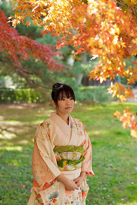 Kimono Girl with maple tree  Beautiful Young Japanese Woman in Kimono with Autumn Foliage