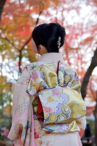 Back of a Girl in Kimono and Obi  Looking at Maple Foliage in Autumn