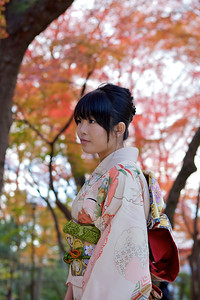 Portrait of a Young Japanese dressed in Kimono