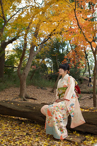 Young Japanese dressed in Kimono with long Sleeves and Obi  Sitting in Autumn Parc