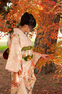 Young Japanese Woman in Kimono from back admiring Autumn Foliage