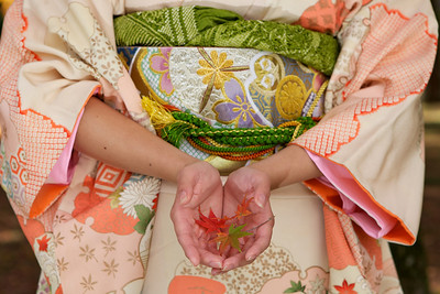 Japanese Woman in Kimono showing Momijo Leafs in her Palms