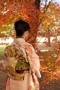 Young Japanese Woman in Kimono from back looking at Autumn Foliage