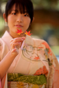 Kimono Girl looking at Camera  Beautiful Young Japanese Woman in Kimono showing Momiji leafs