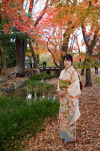 Young Japanese standing at Riverside in Autumn Parc  Dressed in beautiful Kimono with Obi and long Sleeves