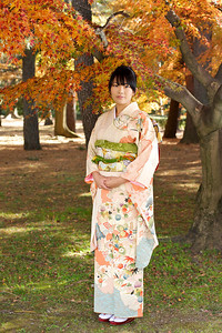 Kimono Girl with Autunm Foliage  Beautiful Young Japanese Woman in Kimono with Autumn Foliage