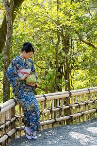 Japanese World Cultural Heritage Kinkaku-ji Temple in Kyoto  Kimono Girl sitting on Bamboo Fence
