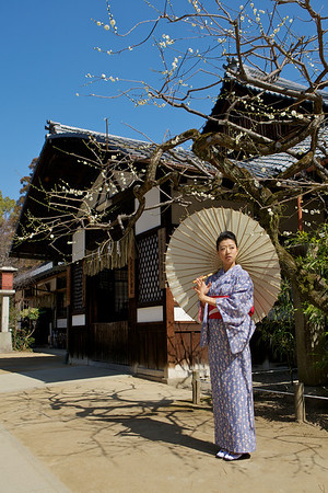 Kimono Girl posing with Parasol<br /> <br /> In Front of a Japanese House with Plum Tree