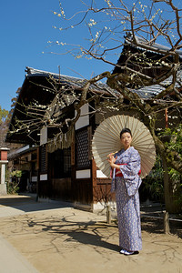 Kimono Girl posing with Parasol  In Front of a Japanese House with Plum Tree