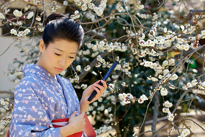 Kimono Girl with Cell Phone under Plum Tree