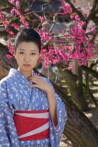 Spring at Kitano Tenmangu Shrine, Kyoto  Japanese Girl in Kimono under Pink Plum Blossoms