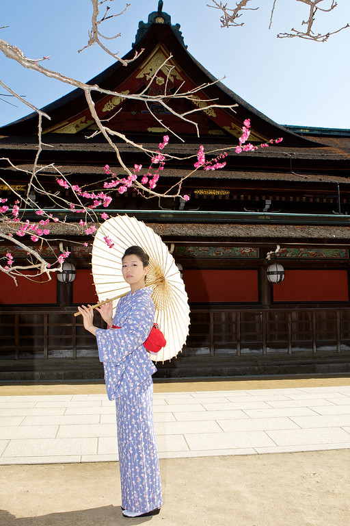 Beautiful Woman with Kimono  Whole Body, posing with Parasol in front of Temple with Blossoms