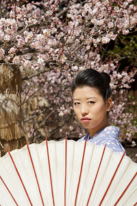 Young Japanese in Front of Spring Blossoms  Wearing Kimono, looking over Parasol