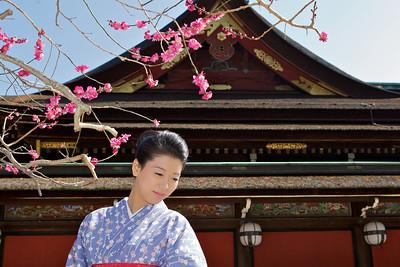 blossoms - Temple - Kimono