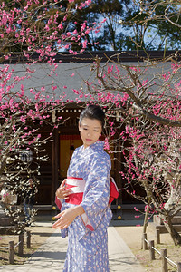 It´s Spring!  Young Japanese in Kimono in Front of Temple with Tree Blossoms