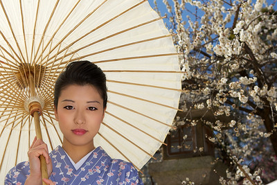 Young Lady, holding Parasol  Traditional Setting, Spring Blossoms