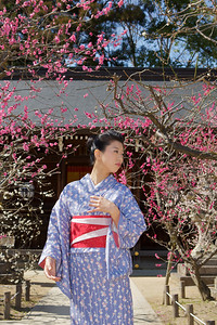 Walking under Trees in Spring  Young Lady in Kimono in Front of a Temple