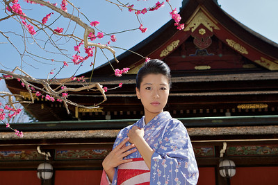 Beautiful Woman with Kimono  Looking at Camera, with Plum Blossoms and Temple Roof