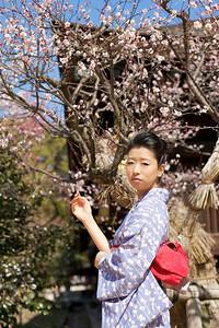Kimono and plum blossoms  Beautiful Woman with Kimono