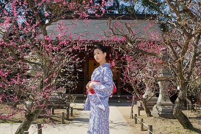 Lady in Kimono admiring Plum Blossoms