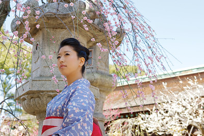 Kimono Girl Portrait  In Front of Stone Lantern, with Plum Trees and Temple Roof