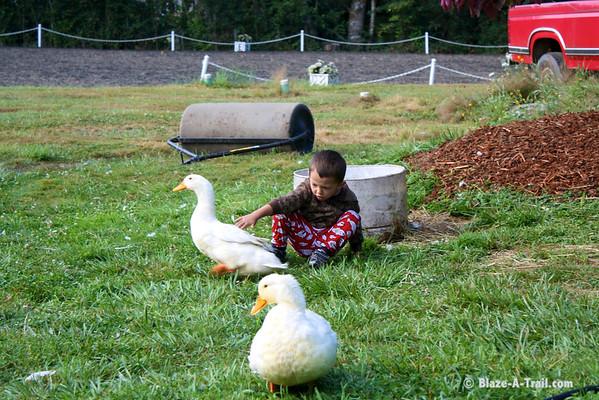 Promise Farm (August 2010)