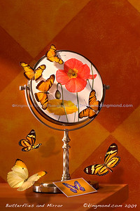 Butterflies and Mirror