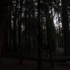 Kings Canyon-9343-25