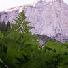 Kings Canyon-9347-29