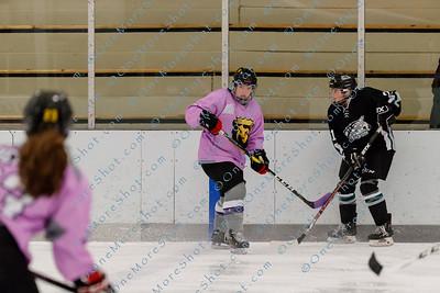 Kings_Womens_Ice_Hockey_vs_Stevenson_12-01-2018-42