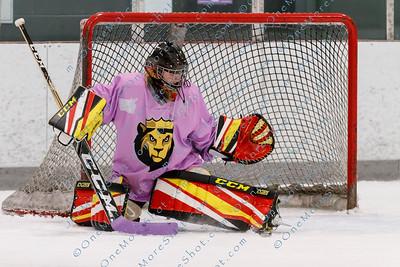 Kings_Womens_Ice_Hockey_vs_Stevenson_12-01-2018-17