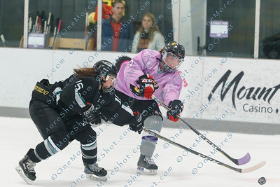 Kings_Womens_Ice_Hockey_vs_Stevenson_12-01-2018-28