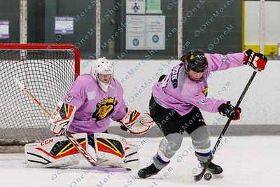 Kings_Womens_Ice_Hockey_vs_Stevenson_12-01-2018-4