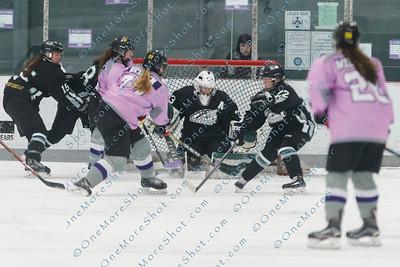 Kings_Womens_Ice_Hockey_vs_Stevenson_12-01-2018-23