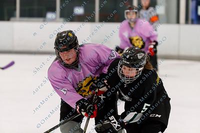 Kings_Womens_Ice_Hockey_vs_Stevenson_12-01-2018-16