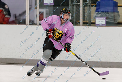 Kings_Womens_Ice_Hockey_vs_Stevenson_12-01-2018-5