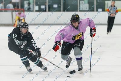 Kings_Womens_Ice_Hockey_vs_Stevenson_12-01-2018-36