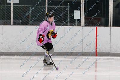 Kings_Womens_Ice_Hockey_vs_Stevenson_12-01-2018-37
