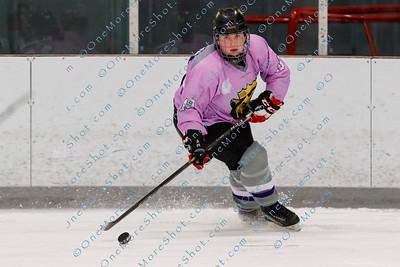 Kings_Womens_Ice_Hockey_vs_Stevenson_12-01-2018-3