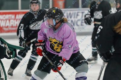 Kings_Womens_Ice_Hockey_vs_Stevenson_12-01-2018-35