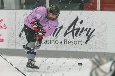 Kings_Womens_Ice_Hockey_vs_Stevenson_12-01-2018-20