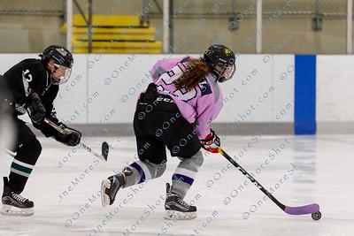 Kings_Womens_Ice_Hockey_vs_Stevenson_12-01-2018-43