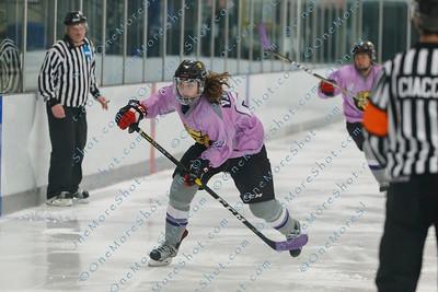 Kings_Womens_Ice_Hockey_vs_Stevenson_12-01-2018-18