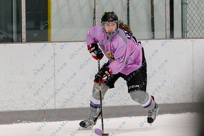 Kings_Womens_Ice_Hockey_vs_Stevenson_12-01-2018-8