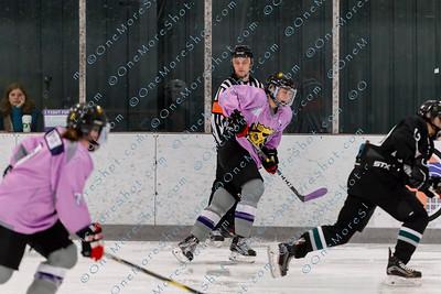 Kings_Womens_Ice_Hockey_vs_Stevenson_12-01-2018-44