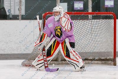 Kings_Womens_Ice_Hockey_vs_Stevenson_12-01-2018-48
